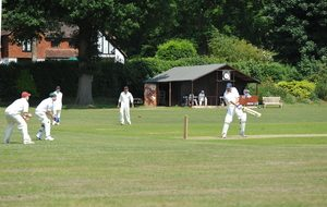 Cricket played at Horsley Sports club